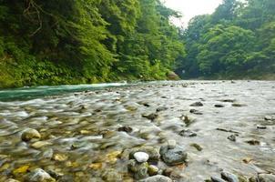 río lleno de guijarros foto