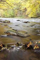 río en otoño foto