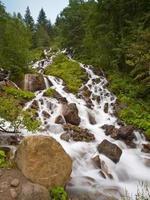 corriente fresca del río