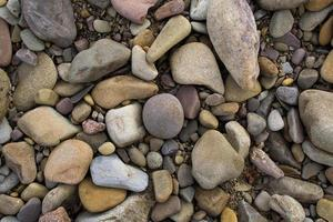 River rocks photo