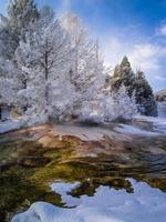 Fresh Snow, Canary Spring, Mammoth Hot Springs photo