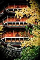 otoño en suzhou, china foto
