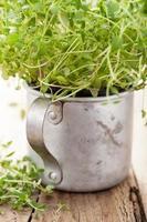 hierba de tomillo fresco en copa rústica foto