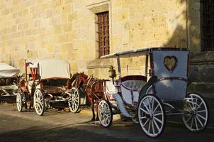 Horse drawn carriages in Guadalajara, Jalisco, Mexico photo