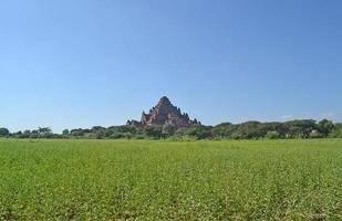 El antiguo templo en Bagan, Myanmar, Birmania