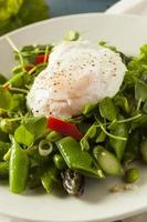 Healthy Scafata with a Poached Egg photo