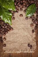 Coffee beans and green leaves photo