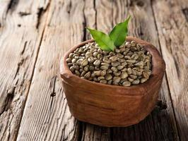 green coffee beans in wooden bowl photo