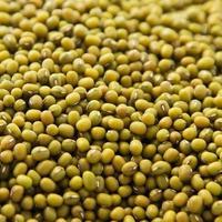 Organic mung beans background