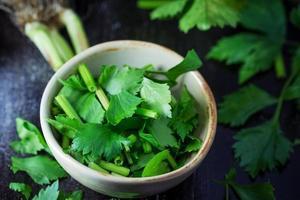 fresh celery in ceramic bowl photo