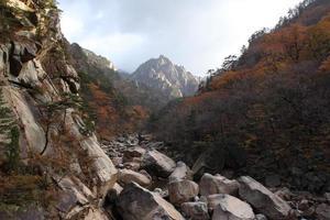 paisagem montanhosa