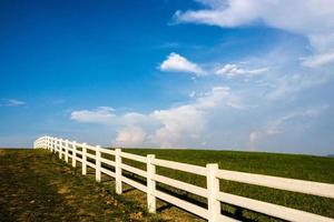 nature landscape photo