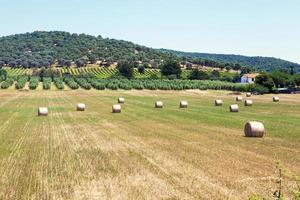 Tuscan village landscape