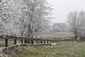 paisaje de invierno de escarcha