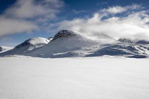 paysage d'hiver enneigé
