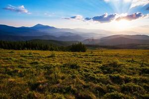 colorido paisaje de verano