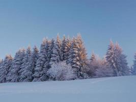 paisaje de nieve invierno