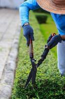 trabalhadores de jardim paisagístico