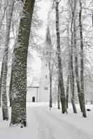 paisaje de invierno en sigulda. foto