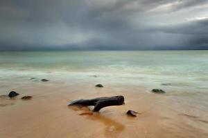 mar báltico en el hermoso paisaje