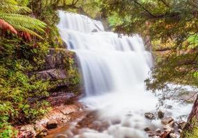 Liffey Falls photo