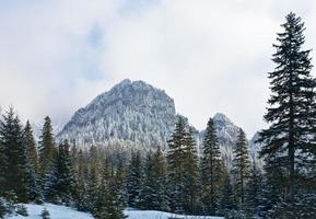 Tatra Mountains in winter photo