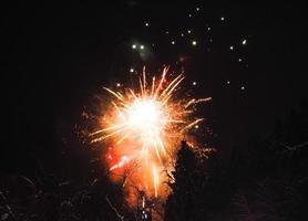 fuegos artificiales japoneses en invierno
