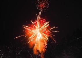 feux d'artifice japonais en hiver