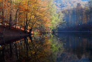 siete lagos foto
