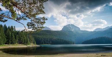 pequeño lago foto