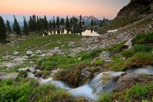mirada plateada lago