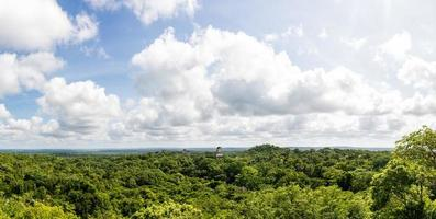 Panoramic View of rainforest and Mayan Ruins . Tikal Guatemala.
