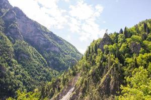 montañas caucásicas cubiertas de bosques.