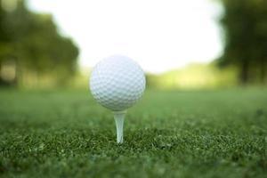 Golf ball on tee XL photo