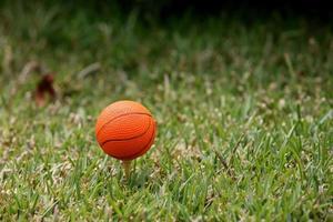 pelota de baloncesto foto