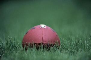 pelota de rugby en una hierba foto