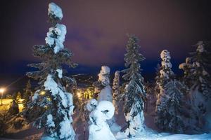 mooie levendige zonnige Scandinavische winterlandschap van skiresort