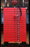 stack of red iron weights 5-80 kg