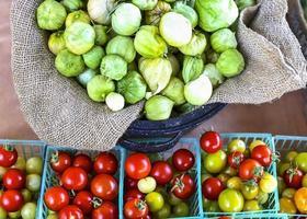 tomatillos y tomates