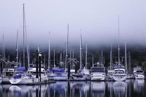 nebliger Yachthafen