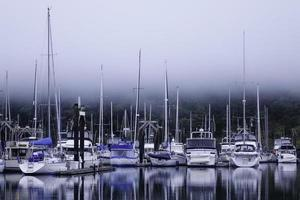puerto deportivo brumoso