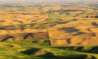 sunset view of Palouse
