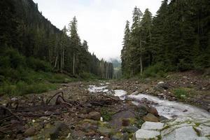 Kennedy Creek photo