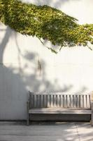 benches, ivy, photo