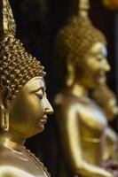 Buddhas photo