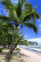 Beach Path. photo