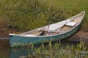 Green Canoe partially in the water on green grass shore