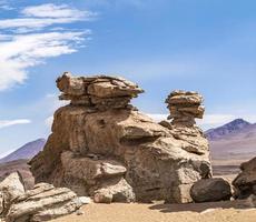Arbol de piedra (árbol de piedra), formación rocosa aislada en bolivia foto