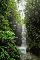 Waterfall among lush tropical foliage