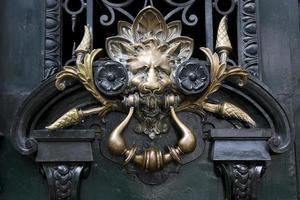 brass brown knocker in a green  door